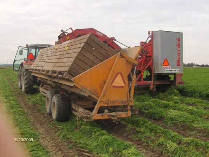 18 oktober 2009; winterpeen oogst, wintertarwe zaaien