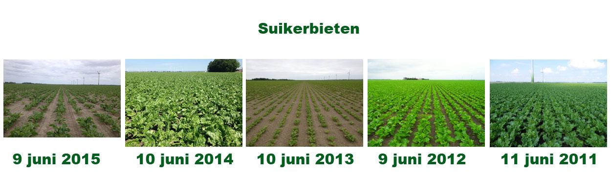 9 juni 2016: gewasgroeivergelijking laatste 6 jaar