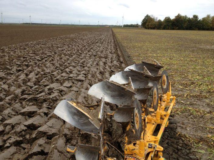 24 en 25 oktober 2012: tarwe zaaien in bietenland