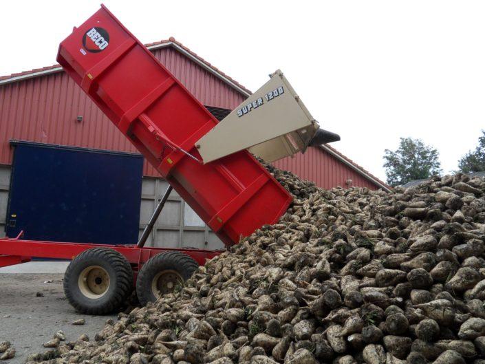 4 oktober 2009; suikerbieten rooien