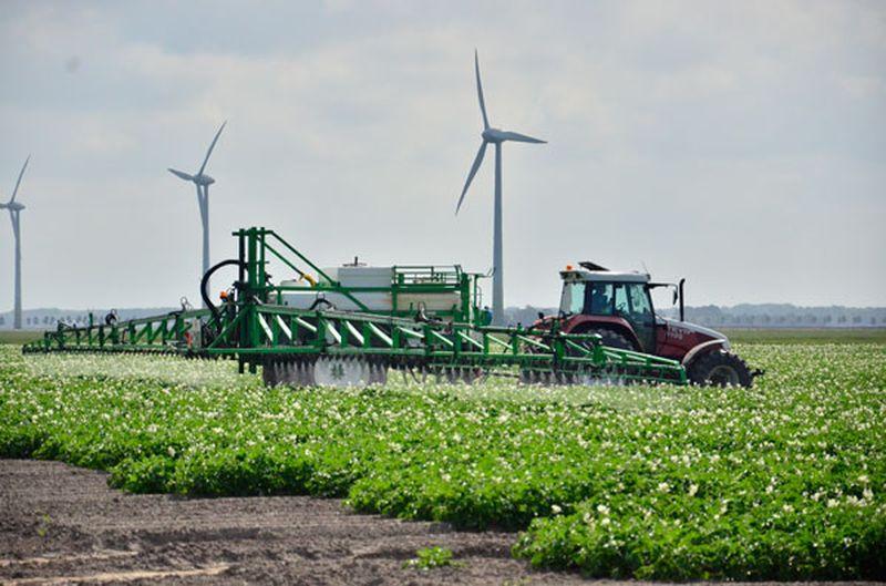 23 juni 2014; gewasbescherming in aardappels