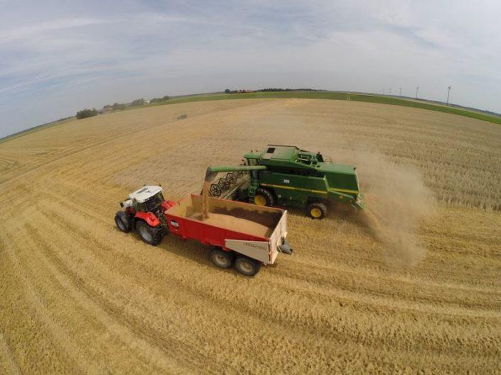 5 en 6 augustus 2015; wintertarwe oogst