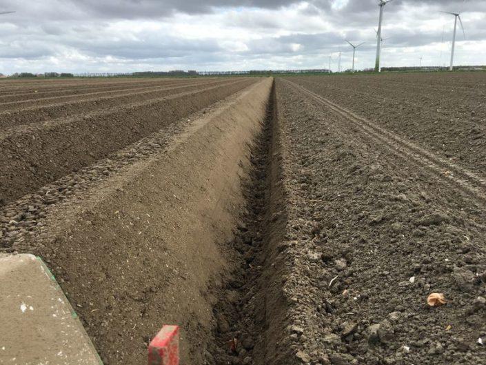24 april 2017; rugopbouw aardappelen gereed