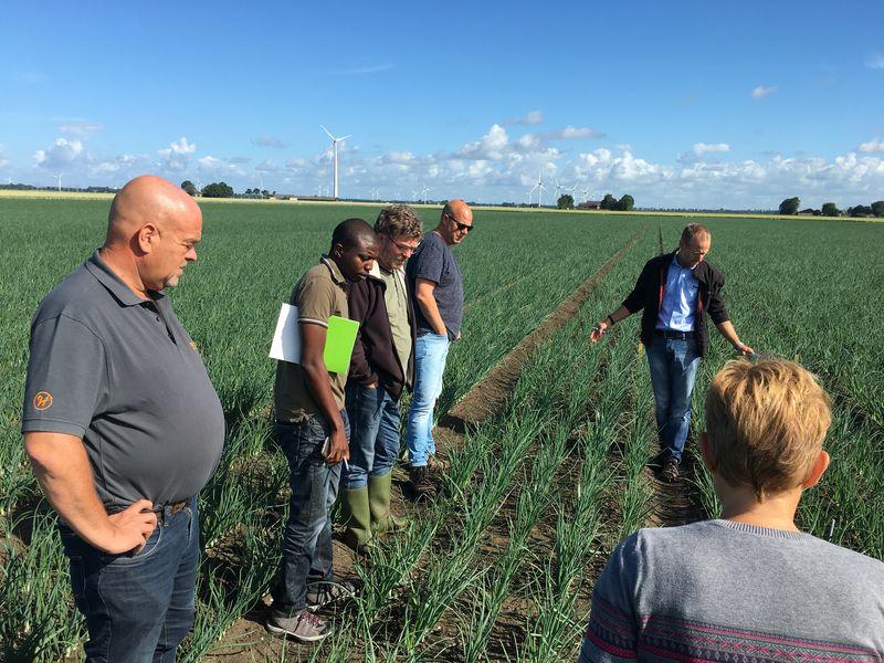Harrysfarm-Swifterbant-Flevoland-26 juni 2016-nieuws-hazera-basf-bloei-aardappel-excursie-wur-Bangladesh-IMG_7568
