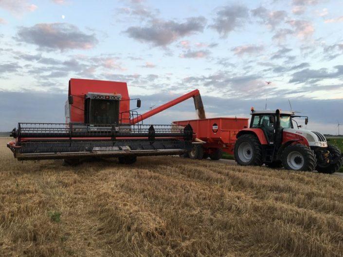 1 en 2 augustus 2017; wintertarwe oogst met Breure