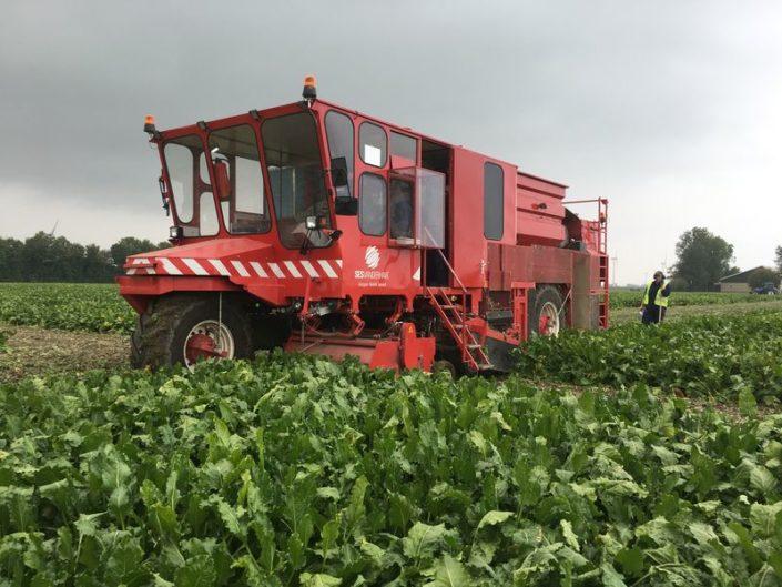 29 september 2017; Eerste week proefveld suikerbieten rooien