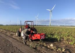 24 augustus 2018; Oogst aardappel proefveld Royal Zap