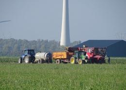 17 oktober 2018; proefveld suikerbieten rooien